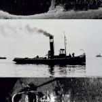 3-x-holownik-Bolek